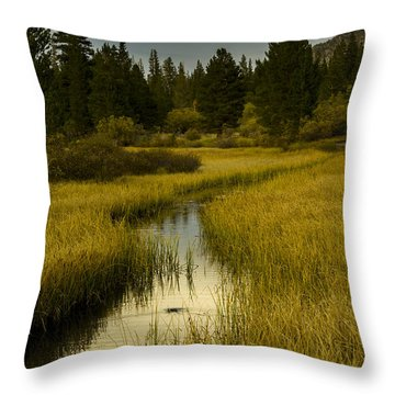 The Fish Are Biting At Rock Creek Throw Pillow