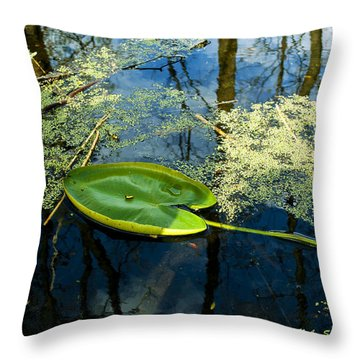 Throw Pillow featuring the photograph The Floating Leaf Of A Water Lily by Verana Stark