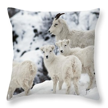 The Flockers Throw Pillow
