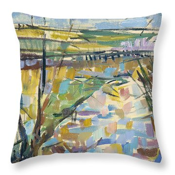 The Flooded Cherwell From Rousham I Oil On Canvas Throw Pillow