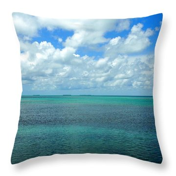The Florida Keys Throw Pillow by Amy McDaniel