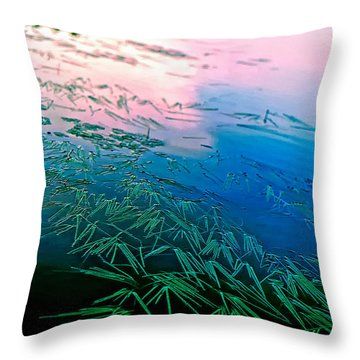 The Flow Throw Pillow by Steve Harrington