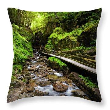 Franconia Notch Throw Pillows