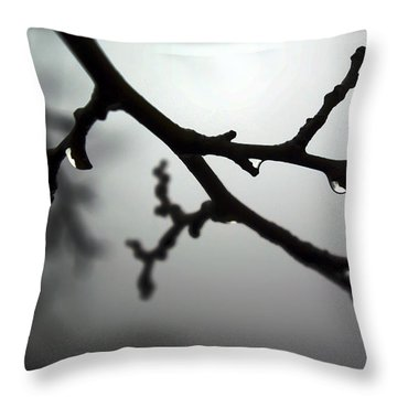 The Foggiest Idea Throw Pillow by Brian Wallace