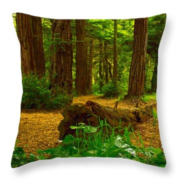 The Forest Of Golden Gate Park Throw Pillow