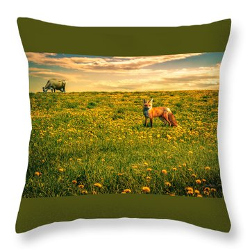 The Fox And The Cow Throw Pillow by Bob Orsillo