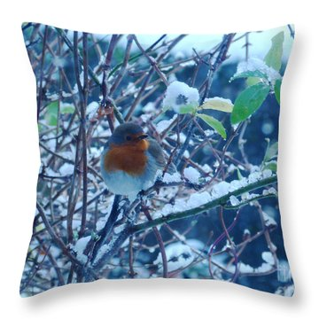 The Friendly Robin Throw Pillow