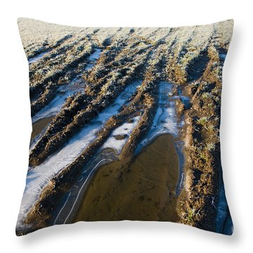 The Frozen Earth Throw Pillow