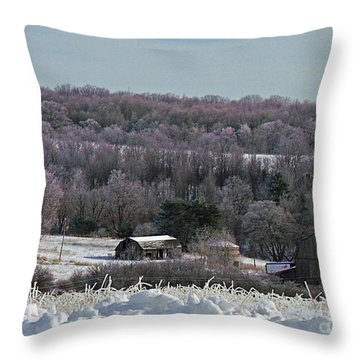 Throw Pillow featuring the photograph The Gaylord Farm by Christian Mattison
