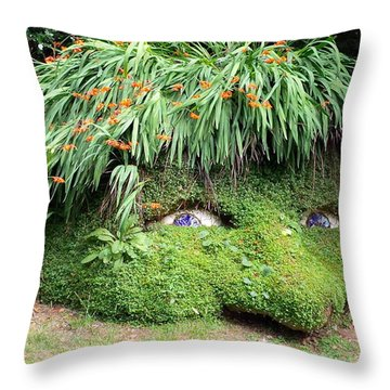 The Giant's Head Heligan Cornwall Throw Pillow by Richard Brookes