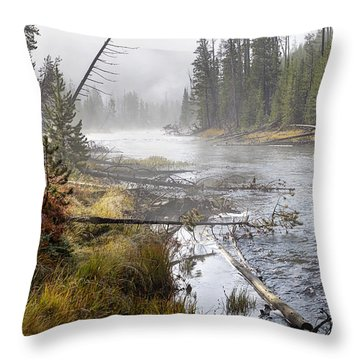The Gibbon's Inviting Waters  Throw Pillow
