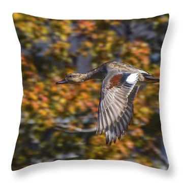 Throw Pillow featuring the photograph The Gift Of Flight by Mitch Shindelbower