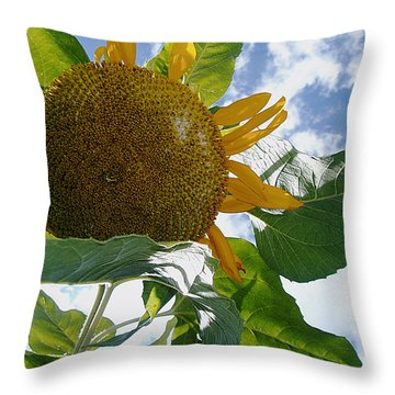 Throw Pillow featuring the photograph The Gigantic Sunflower by Verana Stark