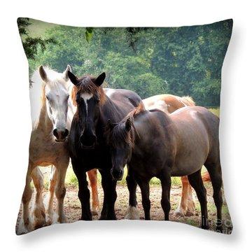 The Girls Throw Pillow by Rabiah Seminole
