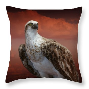 The Glory Of An Eagle Throw Pillow by Holly Kempe