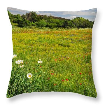 The Glory Of Spring Throw Pillow by Lynn Bauer