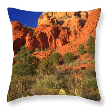 The Glory Of The Desert Red Rocks 1 Throw Pillow