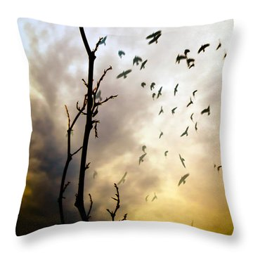 The Gods Laugh When The Winter Crows Fly Throw Pillow by Bob Orsillo