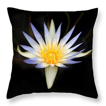 The Golden Chalice Throw Pillow