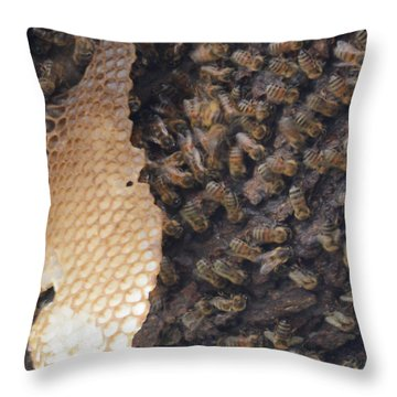 The Golden Hive  Throw Pillow by Shawn Marlow