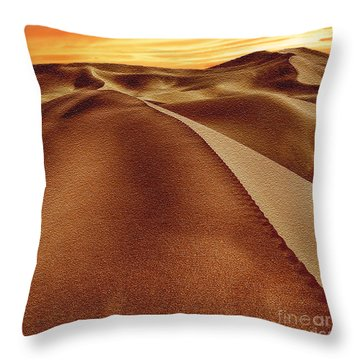 The Golden Hour Anza Borrego Desert Throw Pillow by Bob and Nadine Johnston