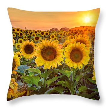 The Golden Hour Throw Pillow by Jill Van Doren Rolo