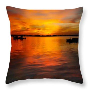 The Golden Hour Throw Pillow by Karen Wiles
