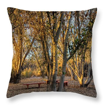 The Golden Hour Throw Pillow by Tammy Espino