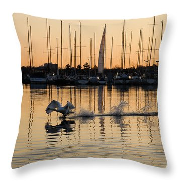 The Golden Takeoff - Swan Sunset And Yachts At A Marina In Toronto Canada Throw Pillow