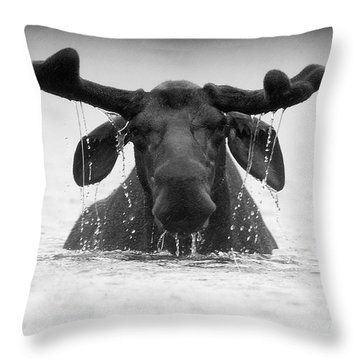 The Goofy Moose Throw Pillow by Jane Axman