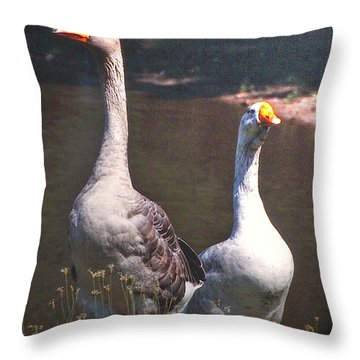 The Goose And The Gander Throw Pillow by Patricia Keller