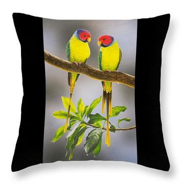 The Gorgeous Guys - Plum-headed Parakeets Throw Pillow