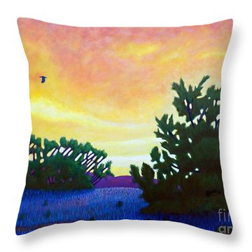 The Gospel Truth Throw Pillow by Brian  Commerford