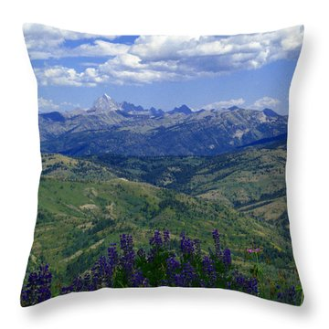 The Grand And Lupines Throw Pillow