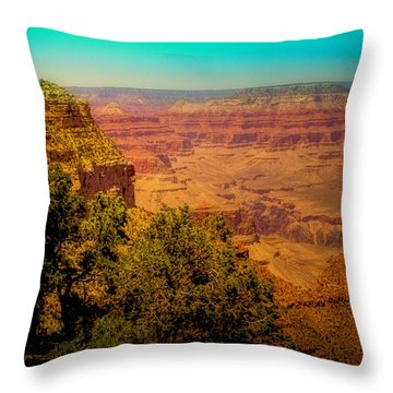 The Grand Canyon Vintage Americana Vii Throw Pillow by David Patterson