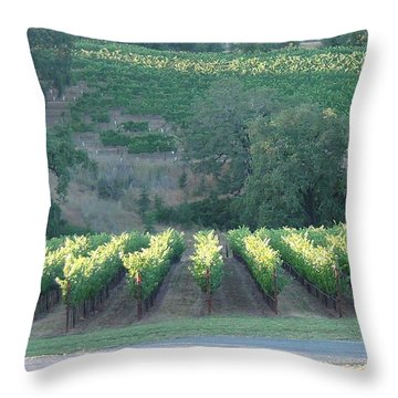 Throw Pillow featuring the photograph The Grape Lines by Shawn Marlow