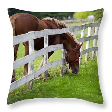 The Grass Is Always Greener Throw Pillow