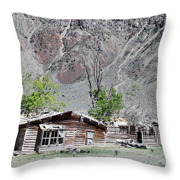 The Grass Is Greener When It's Growing On The Roof Throw Pillow