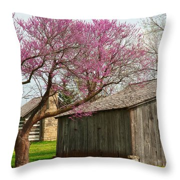 The Gray Campbell Farmstead Throw Pillow by Lena Wilhite
