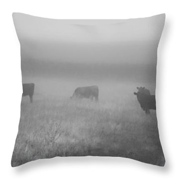 The Graze Throw Pillow