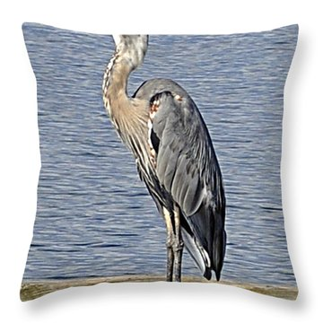 The Great Blue Heron Photo Throw Pillow