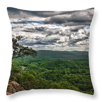 The Great Valley Throw Pillow