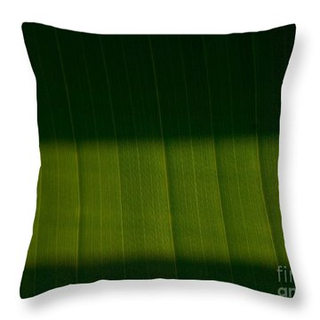 The Green Line Throw Pillow by Tim Good