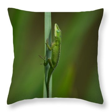 The Green Mile  Throw Pillow by Kathy Gibbons