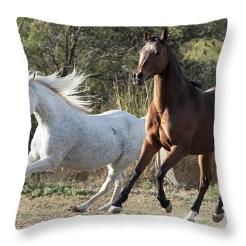 The Grey And The Bay Throw Pillow by Karen Slagle