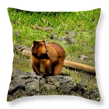The Grizzly Throw Pillow by Robert Bales