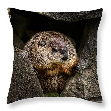 The Groundhog Throw Pillow