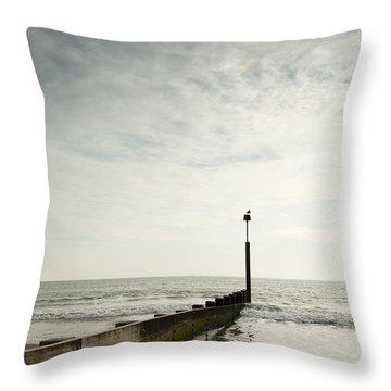 The Groyne Throw Pillow by Anne Gilbert