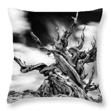 The Guardian Throw Pillow by Tassanee Angiolillo