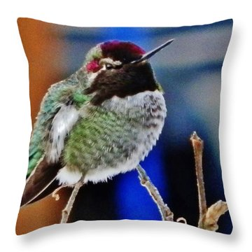 Throw Pillow featuring the photograph The Guardian by VLee Watson